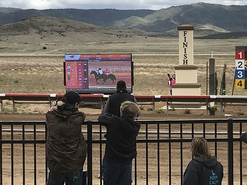 video screen for event